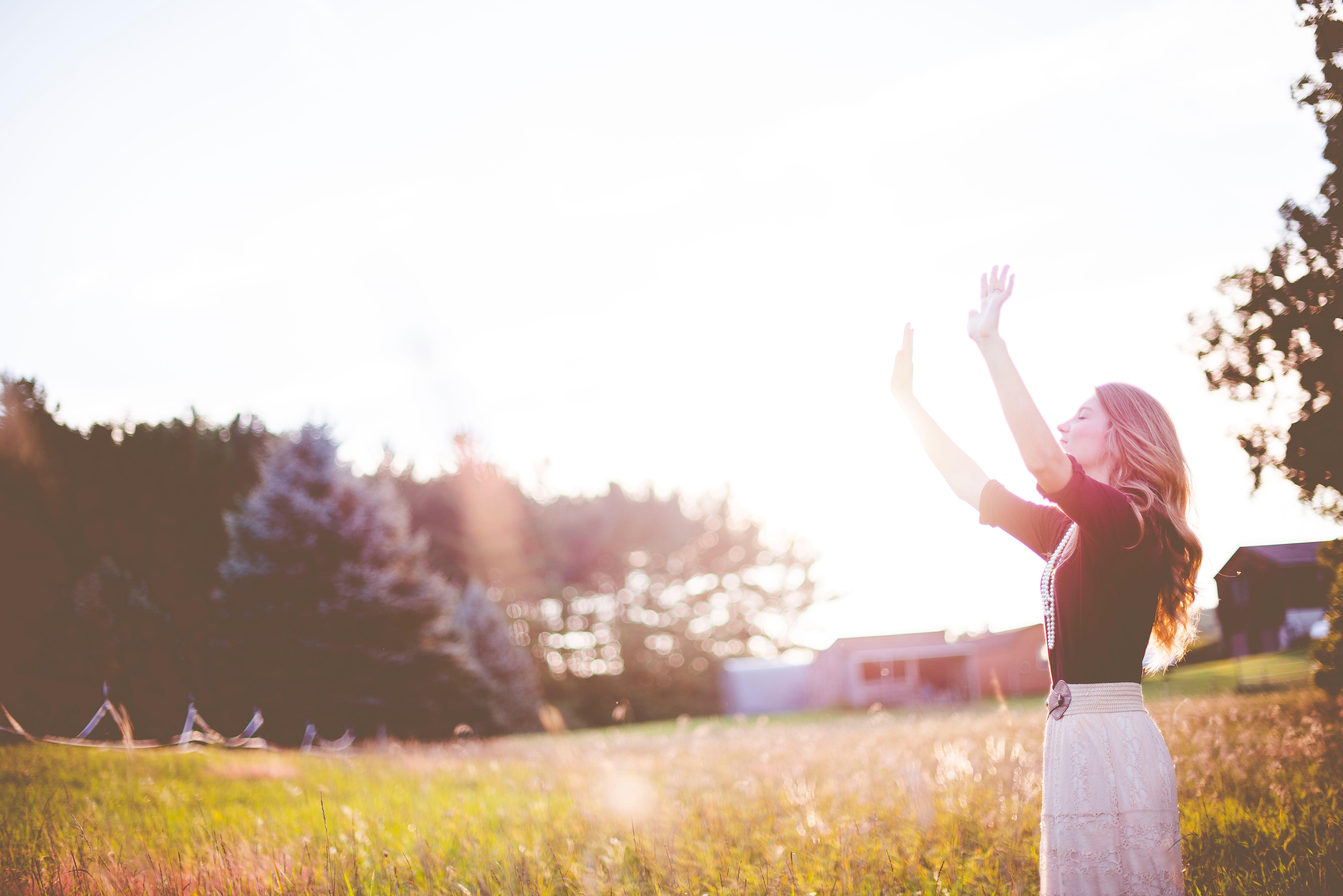 santerias en chicago, botanicavirgenmorena.com, amarres de amor en chicago, lectura del tarot en chicago, santeria in chicago, endulzamientos de pareja, amarres matrimoniales, uniones de pareja, amarres de amor gay, dominios de amor, enamorar, seducir, conquistar, infidelidad, traicion, celos, infiel, rupturas, sufrir de amor